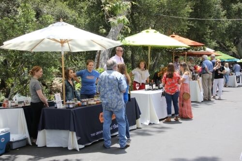 Sb Wine Fest