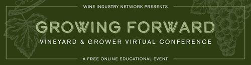 Vineyard Virtual Conference 2021