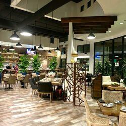 Albatross Restaurant