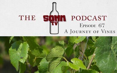 Somm TV Podcast Episode 67