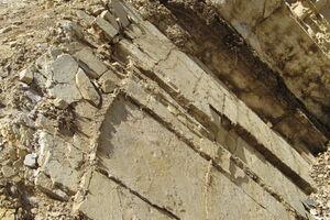 Limestone At Tablas Creek